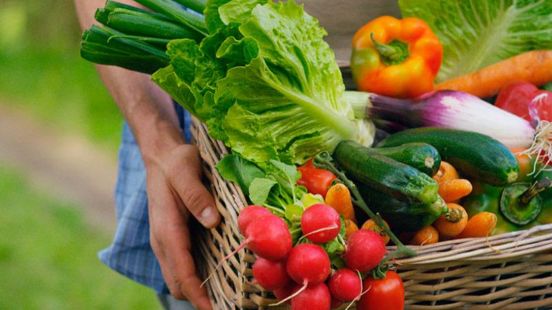Chamada Pública para aquisição de gêneros alimentícios da Agricultura Familiar e do Empreendedor Rural Familiar