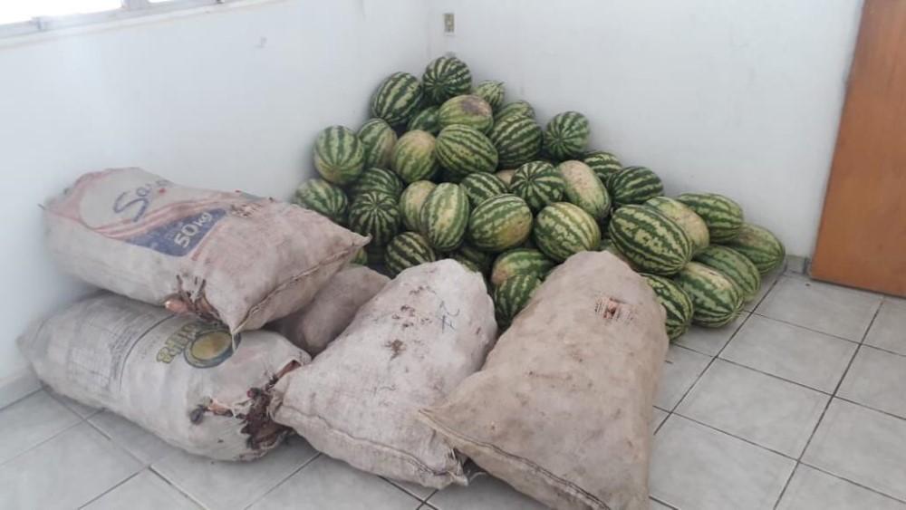 Em parceria com a EMATER, Prefeitura de Atalaia entrega alimentos para famílias assistidas pelo CRAS