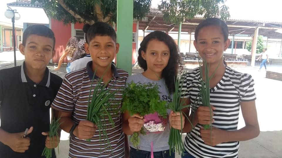 Alunos da Escola Municipal Dr. João Carlos cultivam hortaliças. Foto: Semed Atalaia